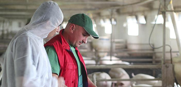 Carne y antibióticos qué es lo que estamos comiendo