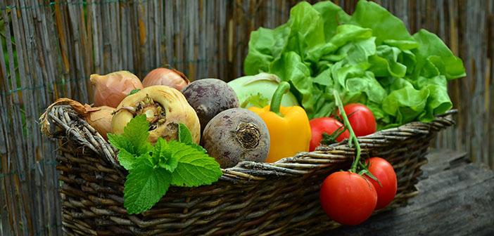 Productos 'Eco-friendly', veganismo, restaurantes vegetarianos, restaurantes ecológicos u orgánicos.
