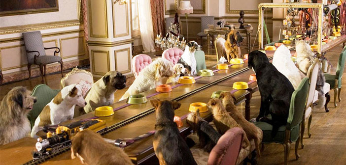Restaurantes que admiten perros, un negocio que crece