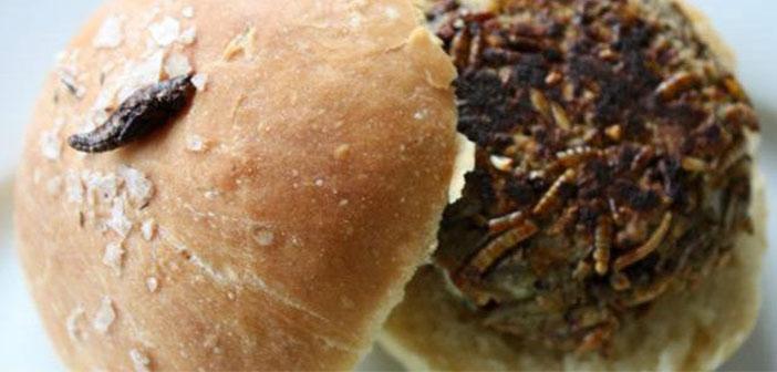 La hamburguesa de larvas, grillos y saltamontes que se sirve con polenta y mayonesa con ajo y hormigas