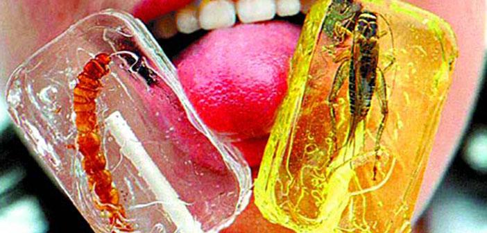 Los caramelos de insecto son un postre al alza entre los aficionados a la entomofagia