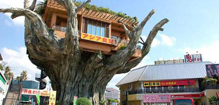 Un restaurante en una casa árbol