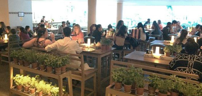 Un ejemplo de ello, como se aprecia en la foto, es que incluso se están utilizando los productos frescos como recursos decorativos con plantas de albahaca o menta expuestas en las mesas del local.