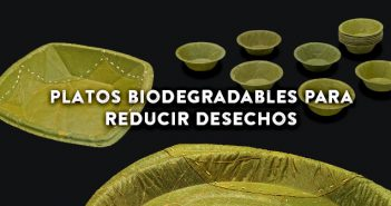 Cómo reducir los desechos de los restaurantes con platos biodegradables