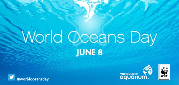 Para terminar, nuestra propuesta de acción social. El Día Mundial de los Océanos se celebra el 8 de junio desde que la Asamblea General de las Naciones Unidas quiso reconocer en 2009 la importancia de los océanos para la salud del planeta.