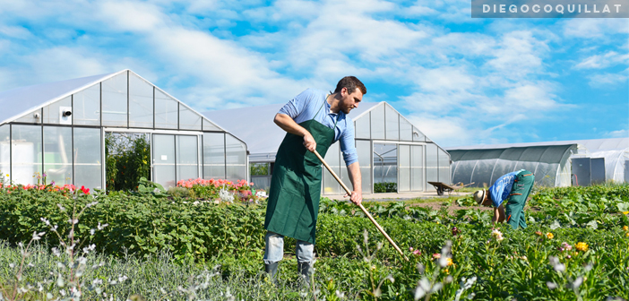 Los restaurantes sostenibles, una tendencia mundial