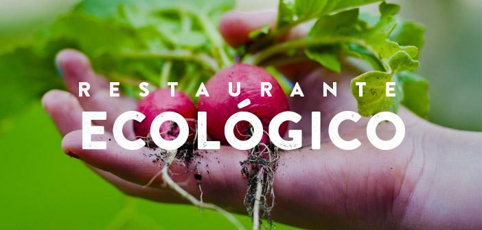 10 reglas de oro para ser un restaurante ecológico   DiegoCoquillat.com