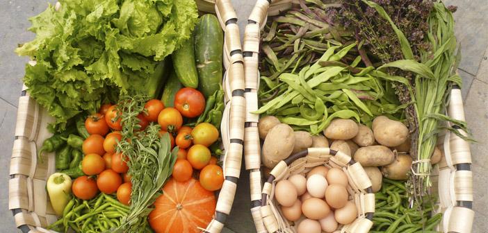 Restaurantes y comida orgánica