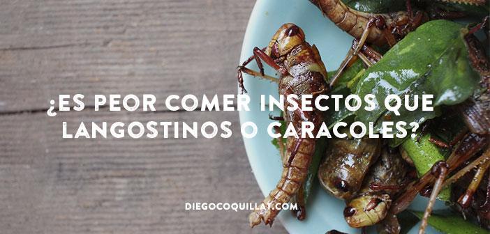 Los platos elaborados con insectos entran en la cocina Europea