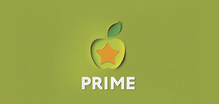 Prime-Star-fast-food-restaurant-chain