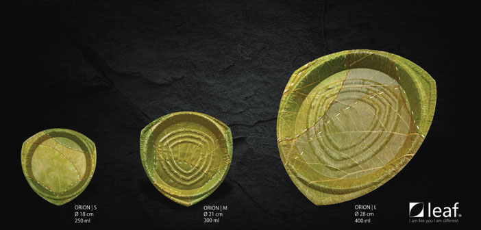 Leaf Republic found an alternative: produce dishes from the leaves of trees are collected and sewn in India, then be pressed in the form of plates and trays in Germany.