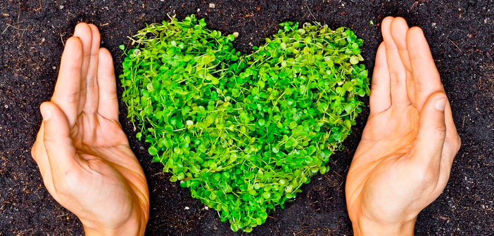 From an action program of gastromarketing, you can create a climate where companies feel identified with caring nature and can practice a corporate lifestyle peaceful and sustainable.