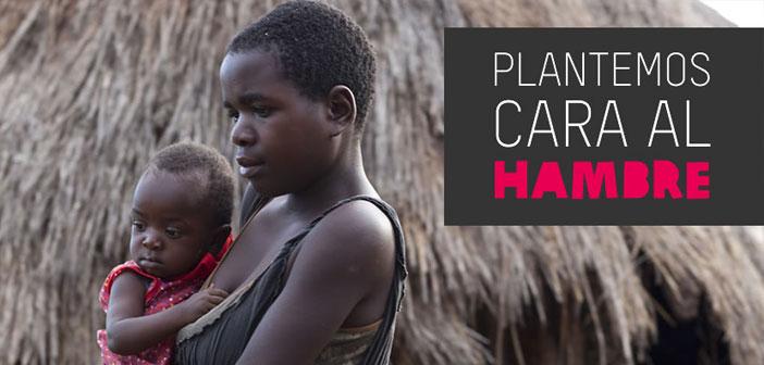 Lucha contra el hambre. La erradicación de las hambrunas crónicas que asolan ciertas regiones del planeta es un asunto pendiente que la humanidad no ha sido capaz de solventar.