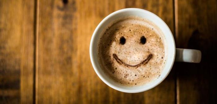 Seize types de bonheur sont envisagés: social, familier, l'entrepreneur, compétitif, physique, coopérative, intellectuel, hédoniste, rythmique, contemplatif, dévoué, fictif, hystérique, forcé, masochistes et risques.