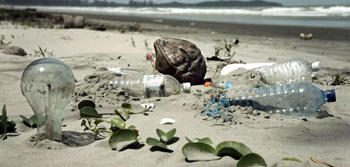 El germen normativo aún tiene que enfrentarse a la cámara del Parlamento Europeo y a los estados miembros, pero todo apunta a que no se pondrán trabas al paso de la norma. Los desechos plásticos han generado una crisis sin parangón. En palabras del portavoz de la Fundación Ellen MacArthur, pronto podríamos estar hablando de que el océano es hogar para más botellas de plástico que para peces.